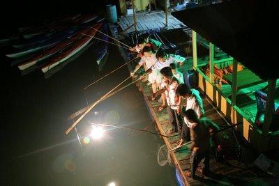 Du khách háo hức câu mực đêm trên Vịnh Hạ Long