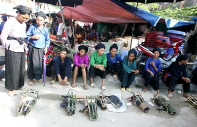 Lợn cắp nách được giao bán ở các phiên chợ