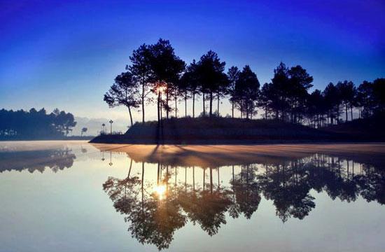 Vẻ đẹp thơ mộng của rừng thông Bản Áng – Mộc Châu