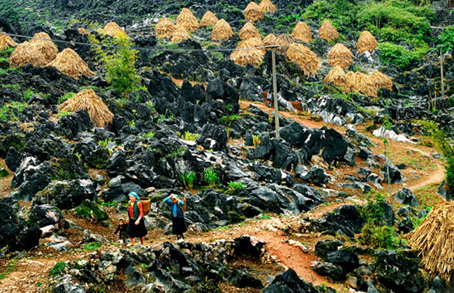 Hình ảnh mộc mạc và bình yên ở cao nguyên đá Đồng Văn